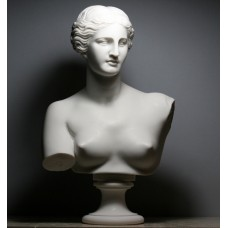 APHRODITE Goddess Venus de Milo Bust Head Greek Roman Cast Marble Statue Sculpture 12.6 inches