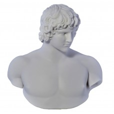 Antinous Emperor Hadrians Lover Bust head Greek Statue Sculpture Cast Marble Copy