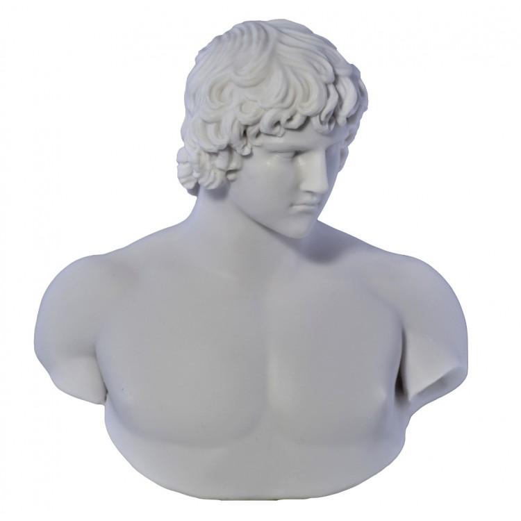 Antinous Emperor Hadrians Lover Bust head Greek Statue Sculpture Cast Marble Copy