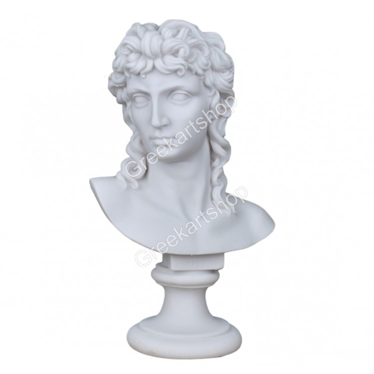 Eros cupid god of love youth bust head male statue sculpture cast marble