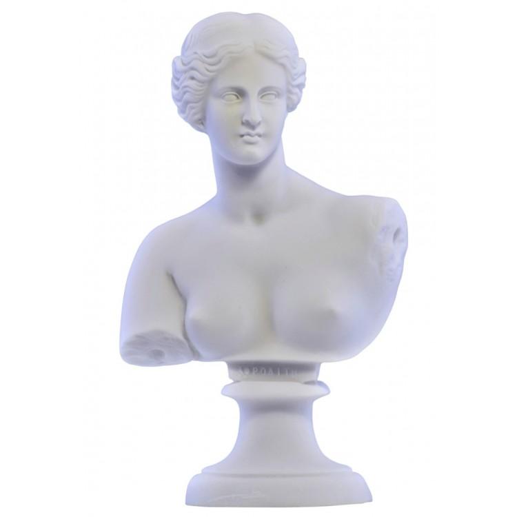 Goddess Aphrodite Venus Bust head Greek Statue Sculpture Cast Marble Copy